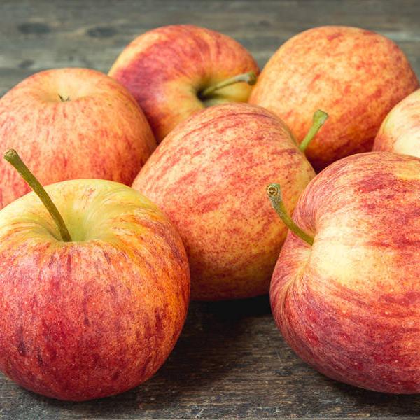 Maraicher local Guérande Légumes fruits pommes gala