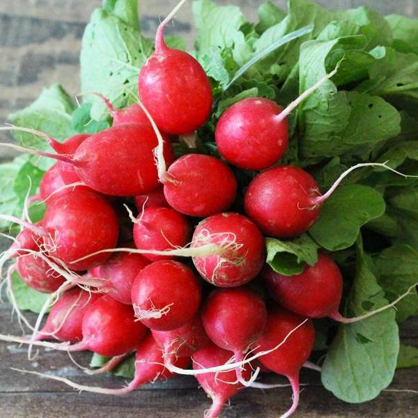 Maraicher local Guérande Légumes fruits radis rouge